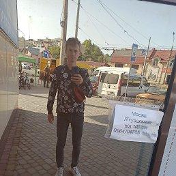 Дмитро, 21 год, Бережаны