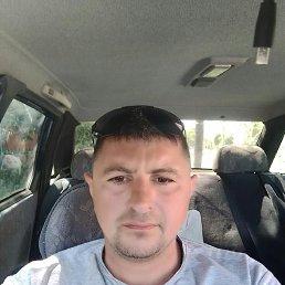 ИВАН, 32 года, Зимовники