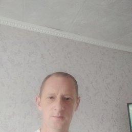 Евгений, 43 года, Калининград