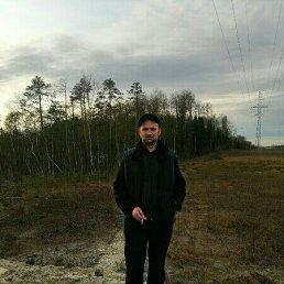 Александр, 37 лет, Омск