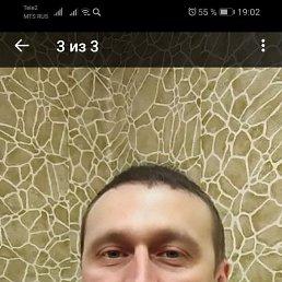 Сергей, 37 лет, Вологда