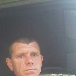 Борис, 45 лет, Северодонецк