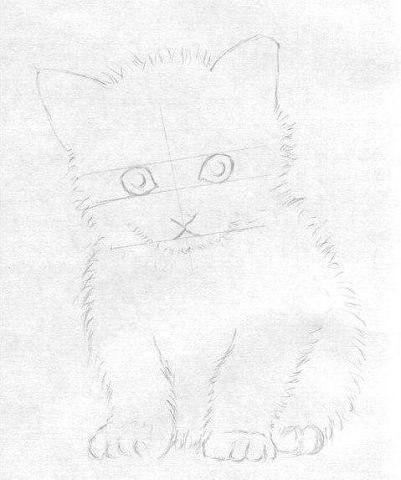 Рисуем маленького котёнка - 4