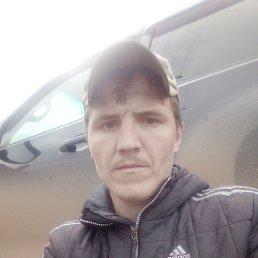 Фото Владимир, Красноярск, 29 лет - добавлено 17 сентября 2020