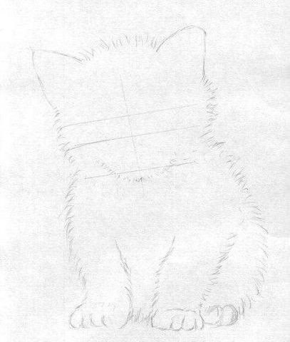 Рисуем маленького котёнка - 3