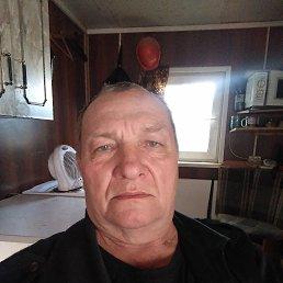 Андрей, 60 лет, Красноярск