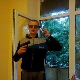 Миша, 26 лет, Могилев-Подольский
