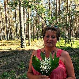 Марина, 53 года, Гдов