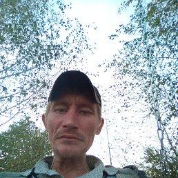 Рома, 36 лет, Борисполь