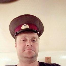 Александр, 41 год, Донецк