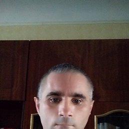 Василий, 37 лет, Винница