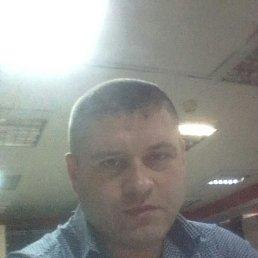 Илья, 34 года, Ревда