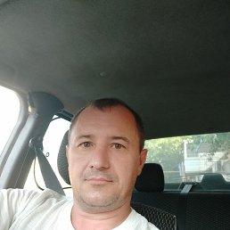 Алексей, 44 года, Сальск