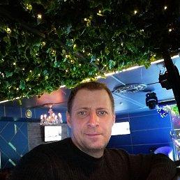 Алексей, 36 лет, Волжский