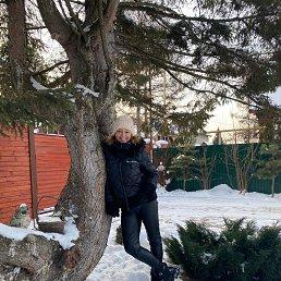 Елена, 45 лет, Новосибирск