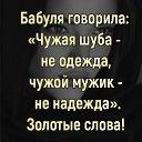 Фото Симба, Георгиевск - добавлено 3 октября 2020