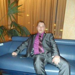 Александр, 40 лет, Воронеж
