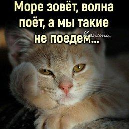 Фото Ирина, Москва, 55 лет - добавлено 25 ноября 2020
