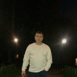 Сергей, 44 года, Калязин
