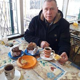 Николай, 43 года, Бровары