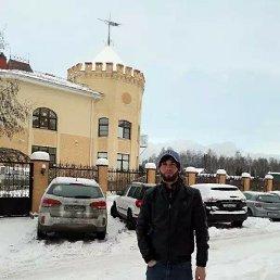 Хасан, 27 лет, Сестрорецк