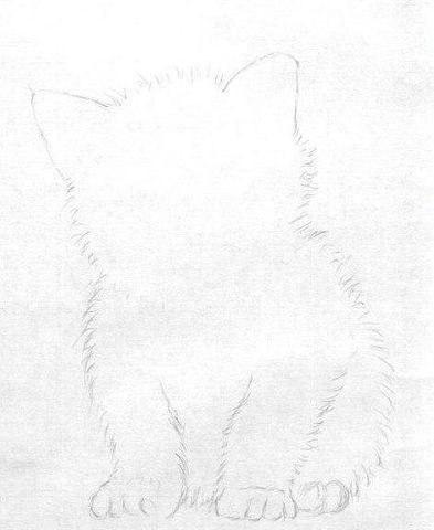 Рисуем маленького котёнка - 2