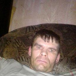 Максим, 41 год, Гатчина