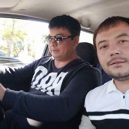 Rustam, 29 лет, Ташкент