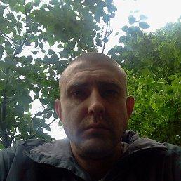 Николай, 38 лет, Северодонецк
