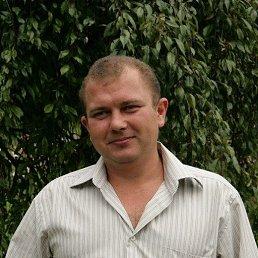 Алексей, 39 лет, Вязьма