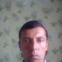 Сергей, 41 год, Еманжелинск