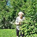 У меня на огороде ещё и жёлтая малина есть.