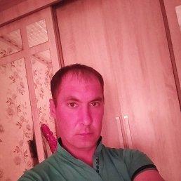 Анатолий, 20 лет, Ульяновск