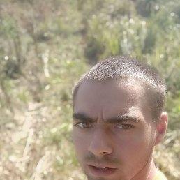 Олександр, 21 год, Васильков