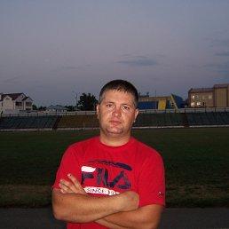 Михаил, 43 года, Ростов-на-Дону