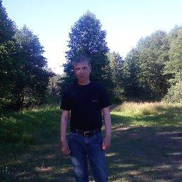 Вячеслав, 51 год, Рошаль