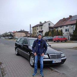 Геннадй, 32 года, Ковель