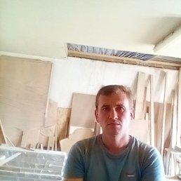 Александр, 38 лет, Ковель