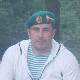 Алексей, 41 год, Нижний Новгород