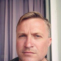 Алексей, 44 года, Калининград