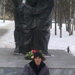 Николай, 38 лет, Тамала