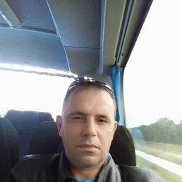 Владимир, 40 лет, Краснодар