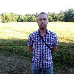 Андрей, 43 года, Тольятти