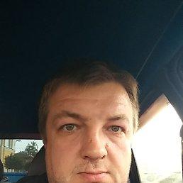 Андрей, 33 года, Боровичи