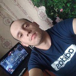 Серёжа, 28 лет, Волхов