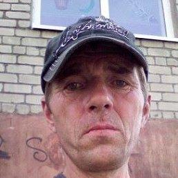 Виктор, 42 года, Калининград