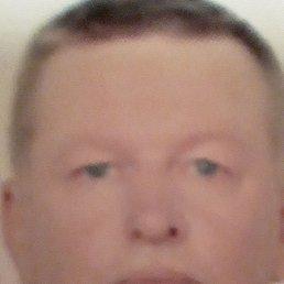 Сергей, 44 года, Тосно