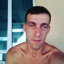Міша, 29 лет, Иршава