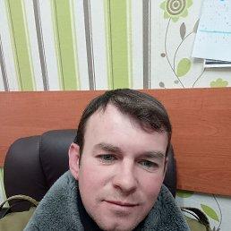 Роман, 36 лет, Купянск