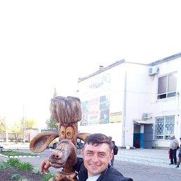 Руслан, 41 год, Беловодск